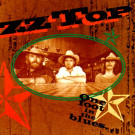 ZZ Top : One Foot in the Blues