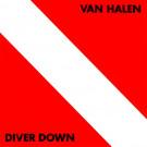 Van Halen : Diver down