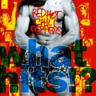 Red Hot Chili Peppers : What Hits